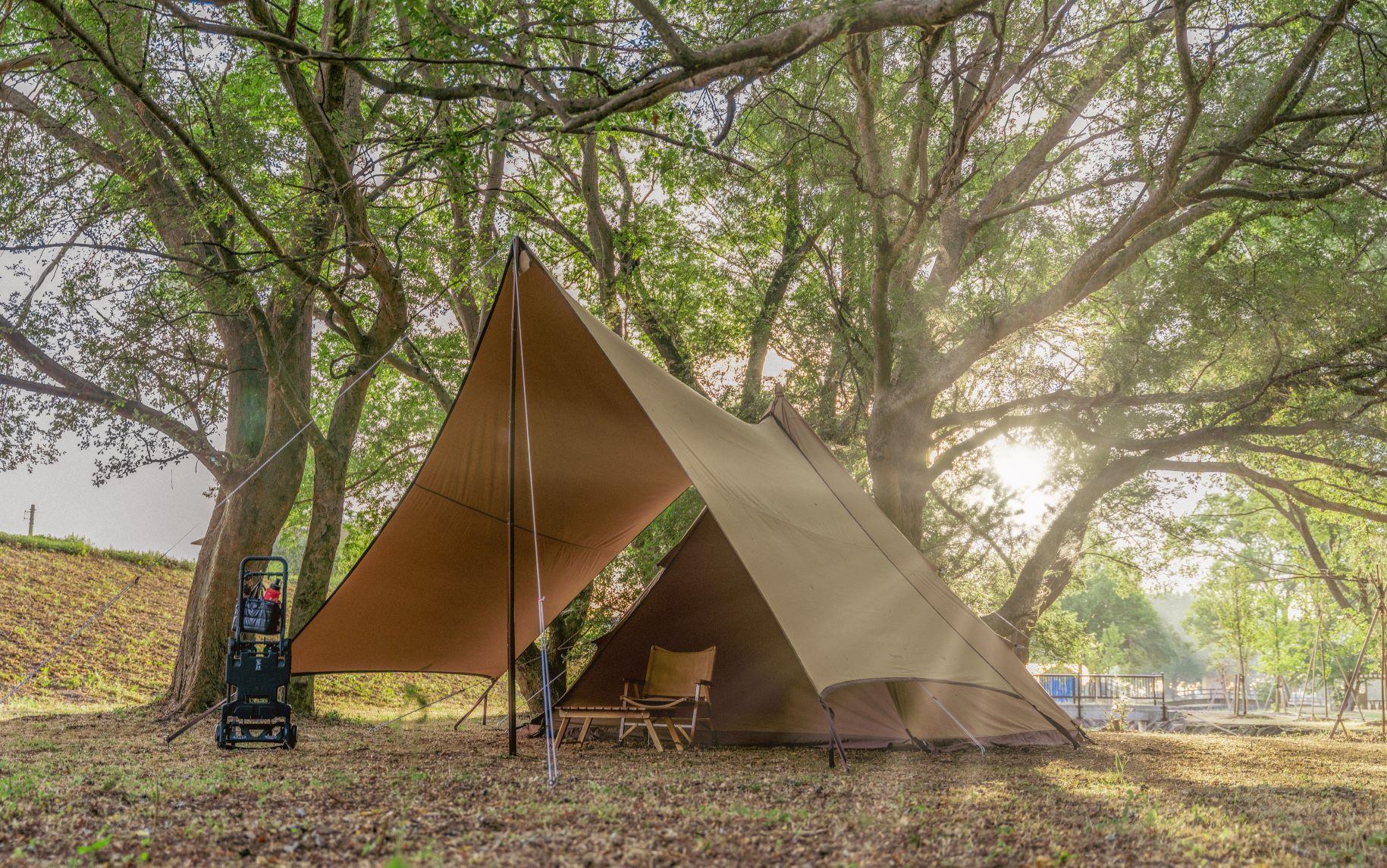 8月のキャンプ!